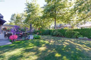 Photo 19: 12 4056 N Livingstone Ave in VICTORIA: SE Mt Doug Row/Townhouse for sale (Saanich East)  : MLS®# 766389
