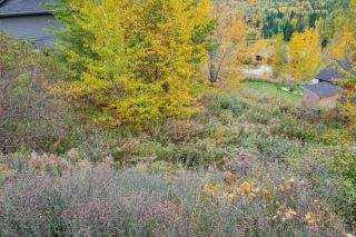 Photo 12: 927 REDSTONE DRIVE in Rossland: Vacant Land for sale : MLS®# 2461564