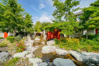 """Photo 31: 37 14877 58 Avenue in Surrey: Sullivan Station Townhouse for sale in """"Redmill"""" : MLS®# R2486126"""