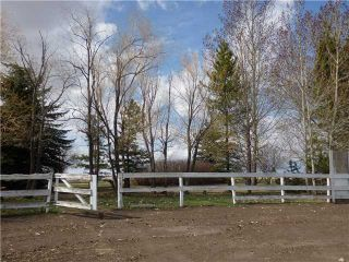 Photo 8: 29342 RANGE RD 275: Rural Mountain View County Residential Detached Single Family for sale : MLS®# C3614784