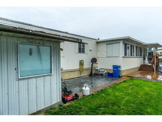"""Photo 19: 179 3665 244 Street in Langley: Otter District Manufactured Home for sale in """"LANGLEY GROVE ESTATES"""" : MLS®# R2316679"""