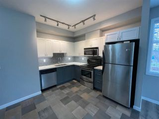 """Photo 7: 211 2511 KING GEORGE Boulevard in Surrey: King George Corridor Condo for sale in """"PACIFICA"""" (South Surrey White Rock)  : MLS®# R2562208"""