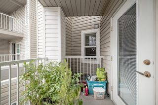 Photo 12: 3224 6818 Pinecliff Grove NE in Calgary: Pineridge Apartment for sale : MLS®# A1107008