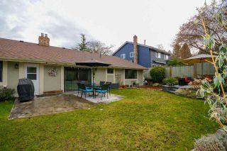 Photo 7: 5353 WILDWOOD Crescent in Delta: Cliff Drive House for sale (Tsawwassen)  : MLS®# R2541314