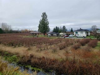 Photo 1: Blueberry Farm FORD RD, Pitt Meadows in Pitt Meadows: West Meadows House for sale : MLS®# R2519795