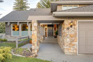 Photo 38: 974 LAKE PLACID Drive SE in Calgary: Lake Bonavista Detached for sale : MLS®# C4299089