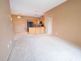 Photo 4: 215 226 MACEWAN Road in Edmonton: Zone 55 Condo for sale : MLS®# E4241529