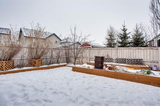 Photo 27: 691 COPPERPOND Circle SE in Calgary: Copperfield Detached for sale : MLS®# A1063241