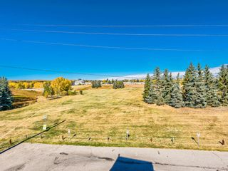 Photo 6: 412A 4455 Greenview Drive NE in Calgary: Greenview Apartment for sale : MLS®# A1101294