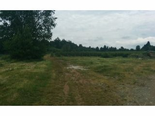 Photo 6: 29700 HUNTINGDON Road in Abbotsford: Aberdeen Land for sale : MLS®# F1415007