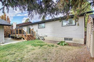 Photo 35: 1351 Idaho Street: Carstairs Detached for sale : MLS®# A1040858