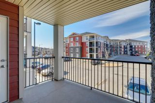 Photo 21: 219 18126 77 Street in Edmonton: Zone 28 Condo for sale : MLS®# E4252015