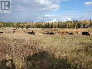 Photo 8: 5664 WEST FRASER ROAD in Quesnel (Zone 28): Agriculture for sale : MLS®# C8037264