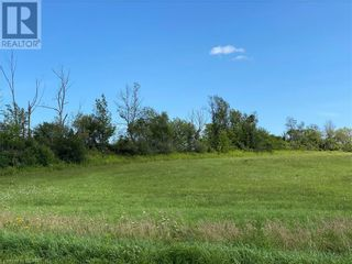 Photo 1: PT 1 & 2 COUNTY ROAD 29 Road in Haldimand Twp: Vacant Land for sale : MLS®# 40109561