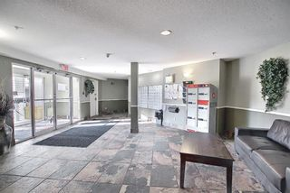 Photo 17: 4306 4975 130 Avenue SE in Calgary: McKenzie Towne Apartment for sale : MLS®# A1082092