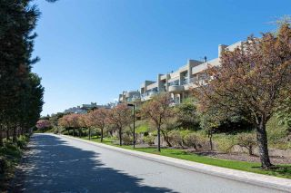 """Photo 3: 2378 FOLKESTONE Way in West Vancouver: Panorama Village Townhouse for sale in """"Westpointe"""" : MLS®# R2572658"""