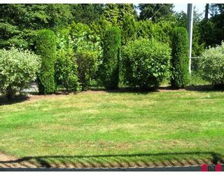 """Photo 5: 59 3110 TRAFALGAR Street in Abbotsford: Central Abbotsford Townhouse for sale in """"NORTHVIEW"""" : MLS®# F2914124"""