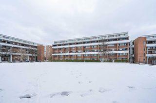 Photo 1: 302 135 Leeward Glenway Street in Toronto: Flemingdon Park Condo for sale (Toronto C11)  : MLS®# C5127058