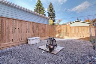 Photo 28: 150 Cornwallis Drive NW in Calgary: Cambrian Heights Detached for sale : MLS®# A1122258