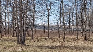 Photo 13: Range Road 55 in Rural Rocky View County: Rural Rocky View MD Land for sale : MLS®# C4295902