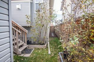 Photo 34: 259 CRANBERRY Place SE in Calgary: Cranston Detached for sale : MLS®# C4214402