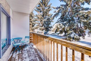 Photo 27: 2015 40 Street SE in Calgary: Forest Lawn Semi Detached for sale : MLS®# A1068609