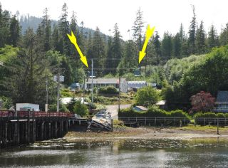 Photo 28: 232 Croft St in WINTER HARBOUR: NI Port Hardy House for sale (North Island)  : MLS®# 835265