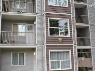 Photo 16: 207 282 BIRCH STREET in CAMPBELL RIVER: CR Campbell River Central Condo for sale (Campbell River)  : MLS®# 793297