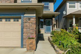 Photo 23: 20032 46 Avenue NW in Edmonton: Zone 58 House for sale : MLS®# E4262791