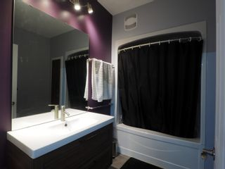 Photo 52: 425 5th Avenue in Oakville: House for sale : MLS®# 202101468