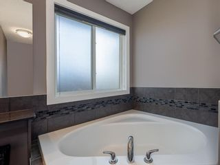 Photo 35: 155 Skyview Shores Crescent NE in Calgary: Skyview Ranch Detached for sale : MLS®# A1110098
