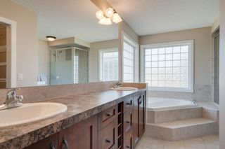 Photo 29: 160 Brightonstone Gardens SE in Calgary: New Brighton Detached for sale : MLS®# A1009065