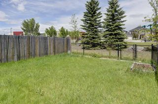 Photo 21: 10 Cranberry Green SE in Calgary: Cranston Semi Detached for sale : MLS®# A1121458