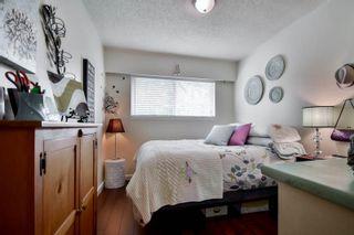 Photo 29: 20801 MCFARLANE Avenue in Maple Ridge: Southwest Maple Ridge House for sale : MLS®# R2065058