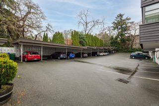 Photo 16: 302 1665 Oak Bay Ave in Victoria: Vi Rockland Condo for sale : MLS®# 862883
