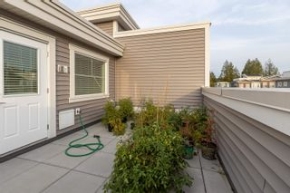 """Photo 29: 71 8371 202B Street in Langley: Willoughby Heights Townhouse for sale in """"Kensington Lofts"""" : MLS®# R2624077"""