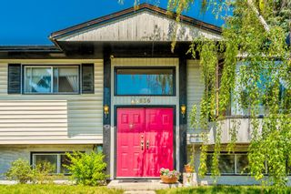 Photo 8: 5836 Silver Ridge Drive NW in Calgary: Silver Springs Detached for sale : MLS®# A1121810