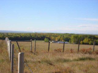 Photo 11: : Edson Rural Land for sale ()  : MLS®# 22122