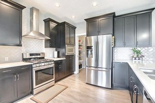 Photo 14: 137 Redstone Common NE in Calgary: Redstone Semi Detached for sale : MLS®# A1132067