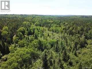 Photo 13: 100 Mount Pleasant Road in St. George: Vacant Land for sale : MLS®# NB059440