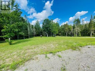 Photo 39: 273 Route 725 in Little Ridge: House for sale : MLS®# NB061305