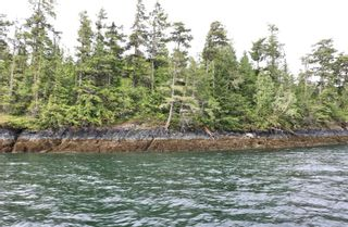 Photo 3: DL1833 Cracroft Island in : Isl Small Islands (North Island Area) Land for sale (Islands)  : MLS®# 887818
