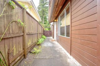Photo 35: 3320 JERVIS Street in Port Coquitlam: Woodland Acres PQ House for sale : MLS®# R2583092