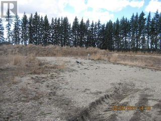 Photo 29: 54131 Township Road 542 in Rural Yellowhead County: Agriculture for sale : MLS®# A1074150
