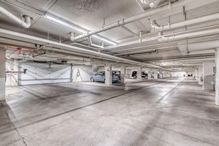 Photo 19: 417 1717 60 Street SE in Calgary: Red Carpet Apartment for sale : MLS®# A1133499