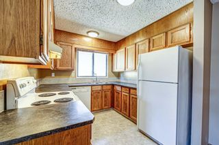 Photo 15: 165 Castlebrook Way NE in Calgary: Castleridge Semi Detached for sale : MLS®# A1107491