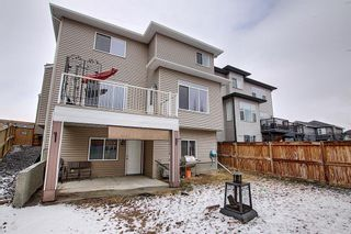 Photo 43: 6 Baysprings Terrace SW: Airdrie Detached for sale : MLS®# A1092177