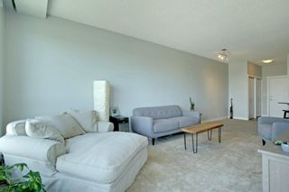Photo 6: 1417 8710 HORTON Road SW in Calgary: Haysboro Apartment for sale : MLS®# A1091415