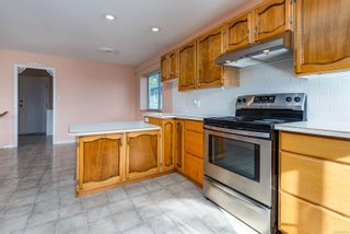 Photo 12: 1381 Williams Rd in : CV Courtenay East House for sale (Comox Valley)  : MLS®# 873749