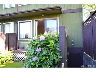 Photo 2: 1 1786 Albert Ave in VICTORIA: Vi Jubilee Row/Townhouse for sale (Victoria)  : MLS®# 664833
